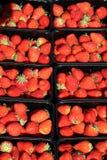 Morangos frescas para a venda Fotos de Stock Royalty Free