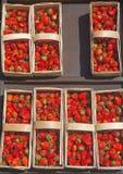 Morangos frescas que estão sendo vendidas Imagens de Stock Royalty Free
