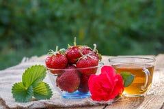 Morangos maduras vermelhas na bacia de vidro e no copo do chá verde foto de stock royalty free