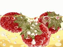 Morangos no fundo do champanhe Fotografia de Stock Royalty Free