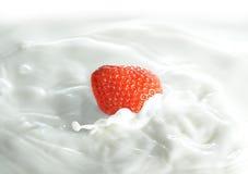 morangos no leite foto de stock