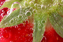Morangos no macro da água Imagem de Stock