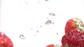 Morangos que caem no movimento lento da água vídeos de arquivo