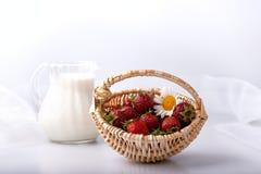 Morangos recentemente escolhidas em uma cesta e em um leite imagem de stock royalty free