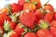 Morangos vermelhas deliciosas Imagem de Stock