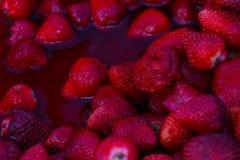 Morangos vermelhas suculentas em um dia quente Fotografia de Stock
