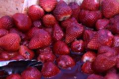 Morangos vermelhas suculentas em um dia quente Imagem de Stock Royalty Free