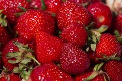 Morangos vermelhas suculentas maduras para o fundo do mercado Fotos de Stock Royalty Free