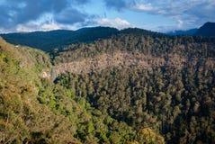 Morans escarpment w Lamington Australia i spadki Zdjęcie Stock