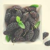 Moras maduras frescas con la menta en cuenco en el fondo blanco, espacio de la copia Imagen de archivo