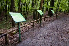 The Morasko meteorite nature reserve Royalty Free Stock Photo