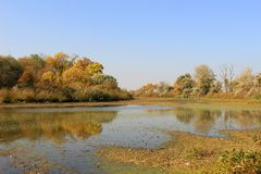 Morava river in the autumn - Indian summer stock photo
