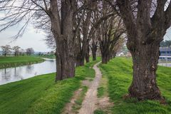 Morava River in Czech Republic. Footpath on a flood embankment of River Morava in Uherske Hradiste, small city in Czech Republic royalty free stock photography