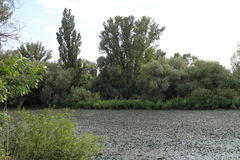 Morava river on Slovak - Austria border line. View from Slovakia to Austria Stock Photo