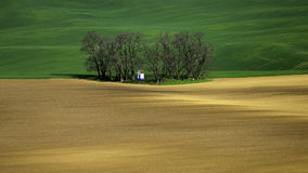 Moravia rolling hills with wheat filds Stock Image