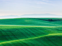 Moravia rolling landscape Stock Photos