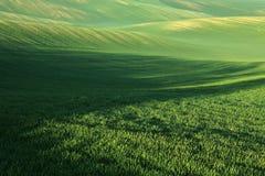 Moravian fält Fotografering för Bildbyråer