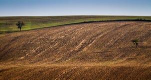 Moravian fält - ett område kallade Moravianen Tuscany, Tjeckien, Europa Arkivbild