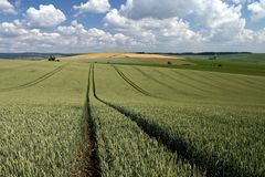 Moravian Felder Stockbild