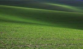 Moravian Fields. Spring in the fields near Brno in Moravia Czech Republic Stock Photos