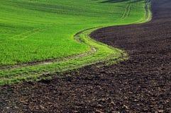 Moravian Fields. Spring in the fields near Brno in Moravia Czech Republic Royalty Free Stock Image