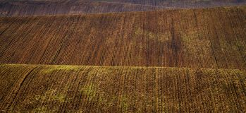 Moravian Fields - an area called the Moravian Tuscany, Czech republic, Europe Royalty Free Stock Photography