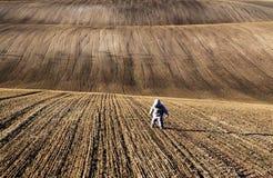Moravian Fields, Czech Republic Stock Photo