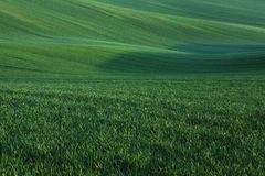 Moravian Fields Royalty Free Stock Images