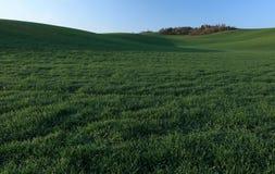 Moravian Fields Royalty Free Stock Image
