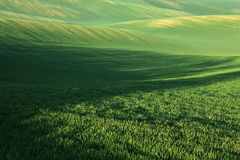 Moravian Fields Stock Image