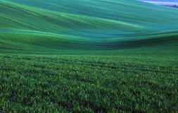 Moravian Fields Stock Photos