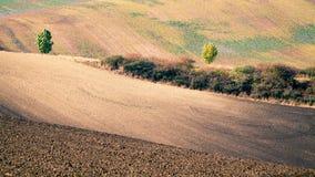 Moravian Fields Stock Photography
