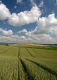 Moravian Fields XII. Spring in the fields near Brno in Moravia Czech Republic Stock Photo
