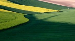 Moravian Fields XV. Spring in the fields near Brno in Moravia Czech Republic Royalty Free Stock Image