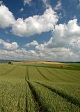 Moravian met en place XII Photo stock