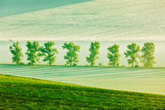 Moravian rolling landscape in early morning Stock Image