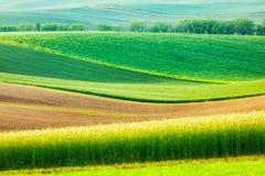 Moravian rolling landscape Stock Photos