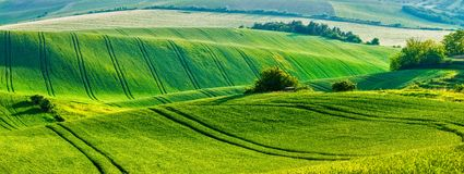 Moravian rolling landscape Royalty Free Stock Photo