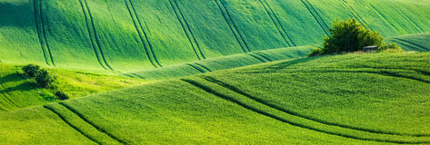 Moravian rolling landscape Royalty Free Stock Photos
