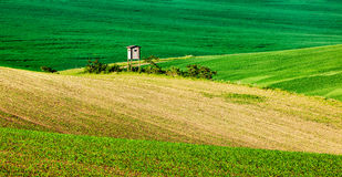 Moravian rolling landscape with hunting tower Stock Photography