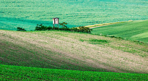 Moravian rolling landscape with hunting tower Royalty Free Stock Photography