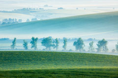 Moravian rolling landscape with trees in early Royalty Free Stock Photo