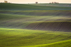 Moravian spring rolling Landscape. South Moravia, Czech Republic Stock Photos