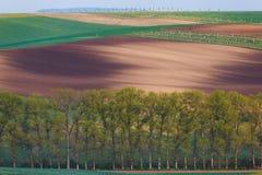 Moravian sul coloca, campos de República Checa, montes moravian Imagem de Stock