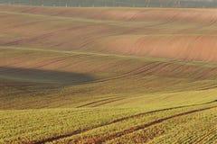 Moravian sul coloca, campos de República Checa, montes moravian Imagem de Stock Royalty Free