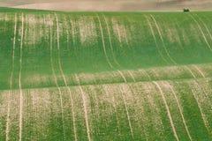 Moravian sul coloca, campos de República Checa, montes moravian Foto de Stock