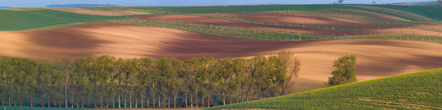Moravian sul coloca, campos de República Checa, montes moravian Fotos de Stock