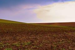 Moravian Toskana, Süd-Moray, Tschechische Republik, Europa Addieren Sie warmen Farbfilter Lizenzfreie Stockbilder