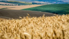 Moravian Tuscany Kyjov. Moravian Tuscany landscape, south Moravia, Czech republic stock photos