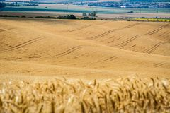 Moravian Tuscany Kyjov. Moravian Tuscany landscape, south Moravia, Czech republic royalty free stock photos